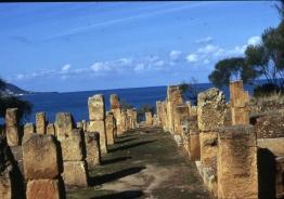 Tipasa ruines