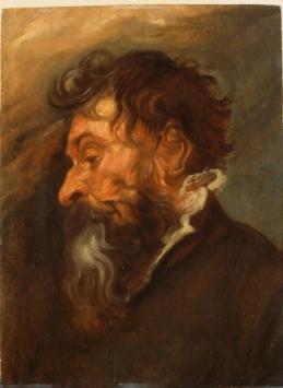 Antoon Van Dyck - Tête de vieil homme barbu