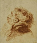 Watteau - Vieillard
