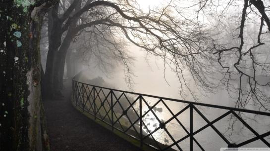 foggy_river-wallpaper-1920x1080