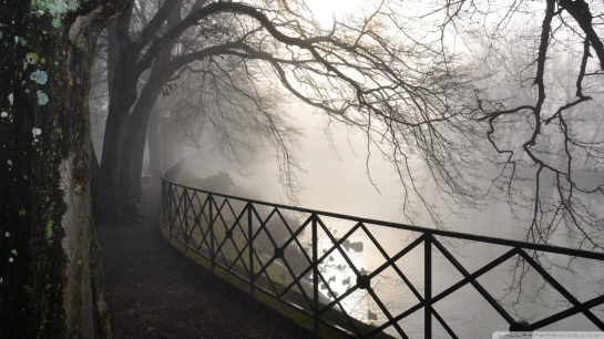 foggy_river-wallpaper-1920x1080