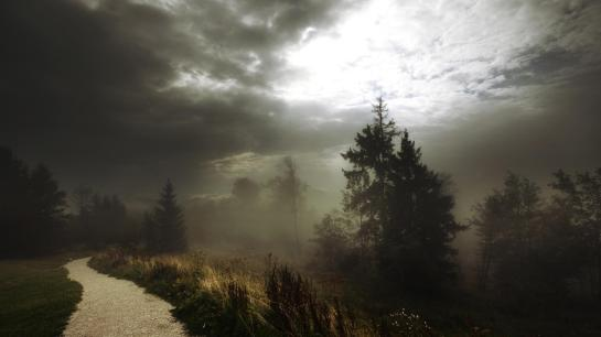 fog-on-a-footpath-in-forest-before-storm